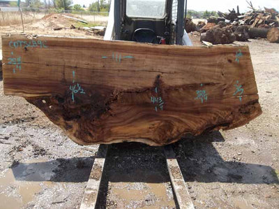 Cottonwood Slab COTSLB9C