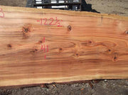 Redwood Slab REDSLB2B