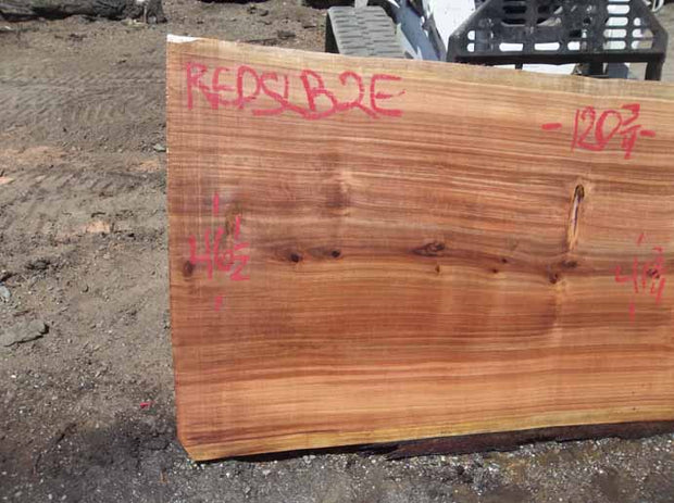 Redwood Slab REDSLB2E
