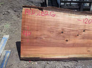 Redwood Slab REDSLB2G