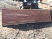 Redwood Slab REDSLB5A