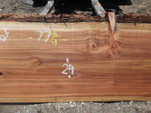Redwood Slab REDSLB6F