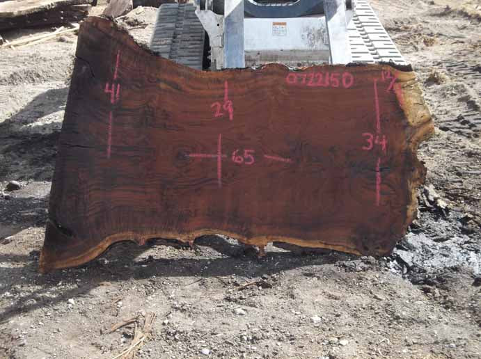 Walnut Slab WALSLB072215D