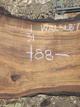 Load image into Gallery viewer, Walnut Slab WALSLB73E