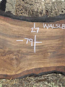 Walnut Slab WALSLB73F