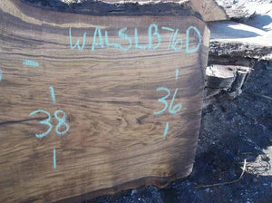Walnut Slab WALSLB76D