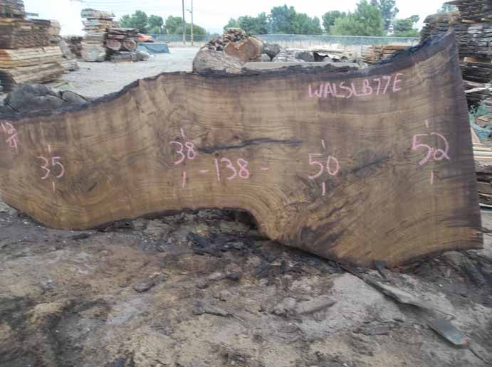 Walnut Slab WALSLB77E