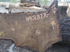 Walnut Slab WALSLB77G