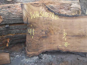 Walnut Slab WALSLB78B