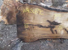 Load image into Gallery viewer, Walnut Slab WALSLB79C