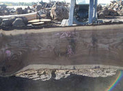 Walnut Slab WALSLB84B