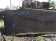 Walnut Slab WALSLB84F