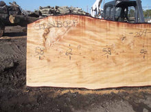 Load image into Gallery viewer, Cedar Slab CEDSLB03F