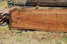 Load image into Gallery viewer, Walnut Slab WALSLB97B