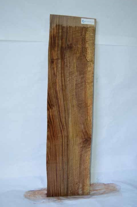 Bastogne Walnut Specialty Piece WALSPC205