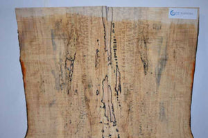 Maple Tonewood MAPTON1