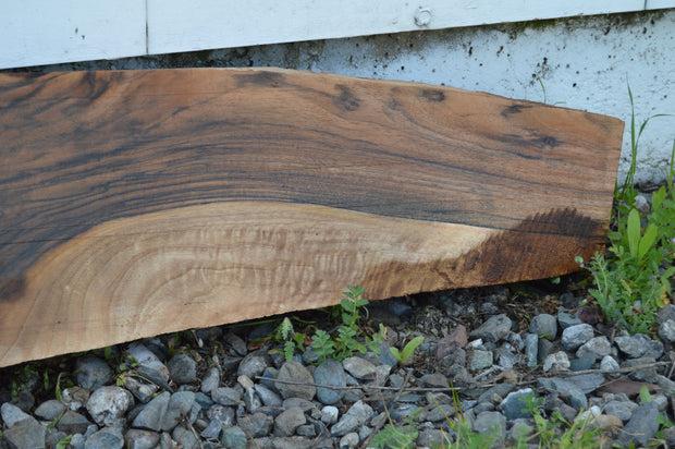 English Walnut Gunstock Blank ENGGUN42