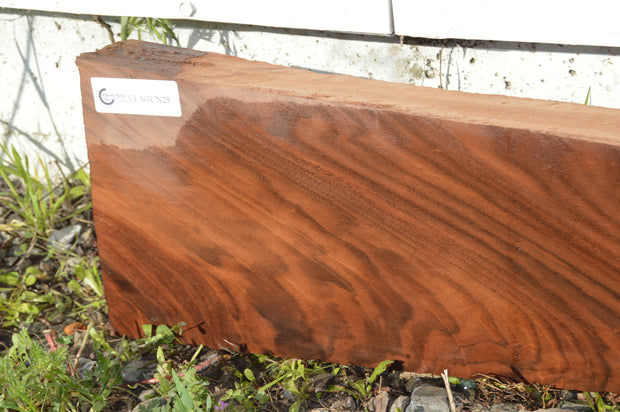 Claro Walnut Gunstock Blank CLAGUN25