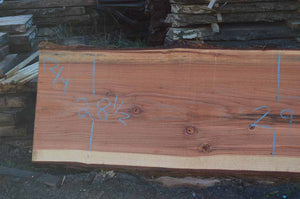 Redwood Slab REDSLB17F