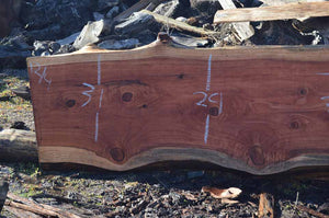 Redwood Slab REDSLB20G