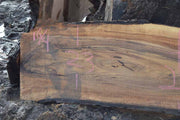 English Walnut Slab ENGSLB08A