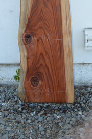 Redwood Board REDSPC17