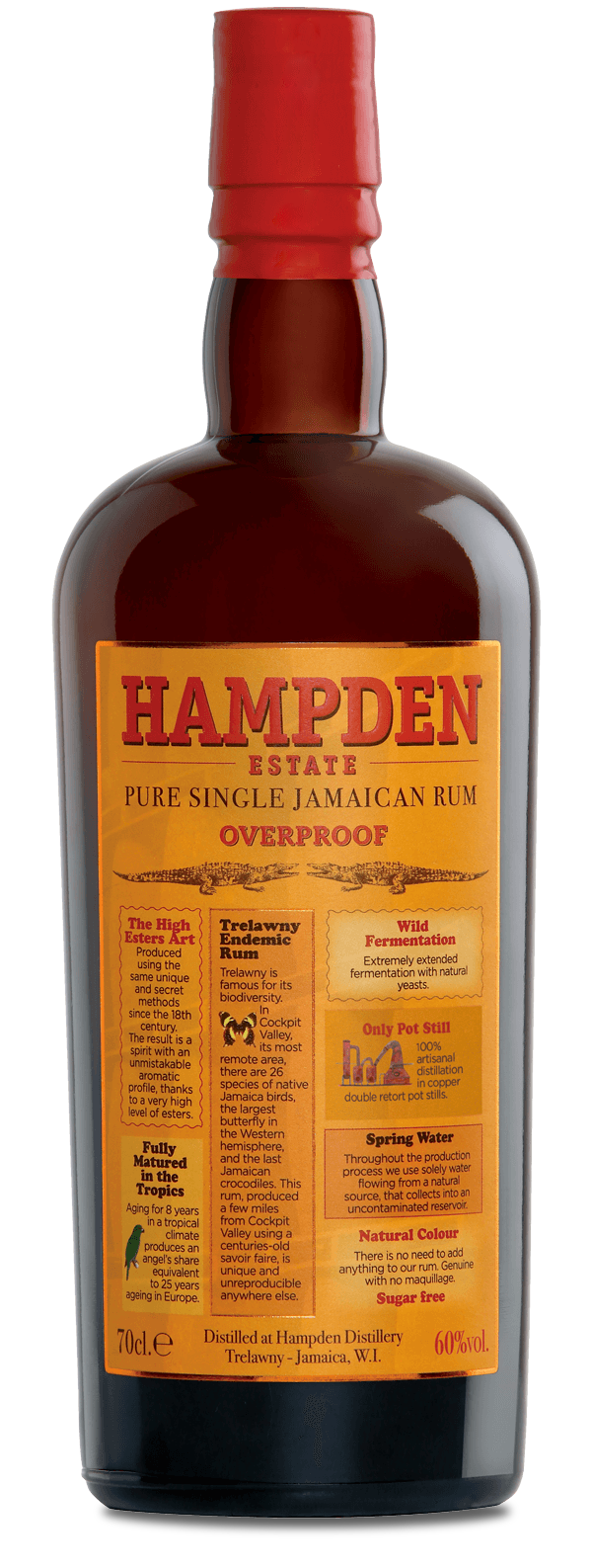 Hampden Estate 120pf Rum - Available at Wooden Cork