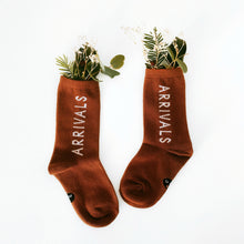 Load image into Gallery viewer, 'Arrivals' Brown Socks - BULB LONDON