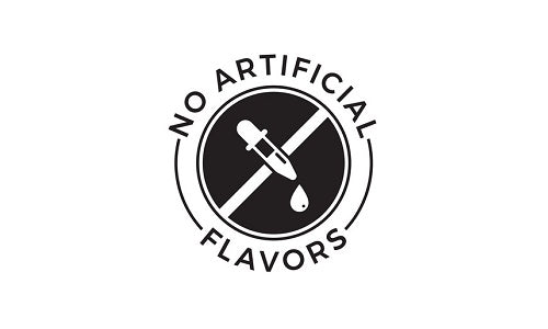 no artificial flavour logo