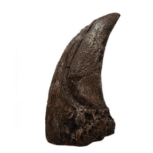 Load image into Gallery viewer, Tyrannosaurus rex Claw