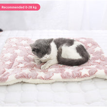 Load image into Gallery viewer, Pet Bed, Soft Flannel Thickened Pet Soft Fleece Pad Pet Blanket Bed Mat For Dog Cat