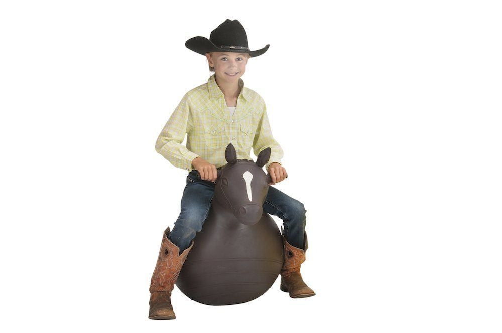 BIG COUNTRY TOYS BOUNCY HORSE