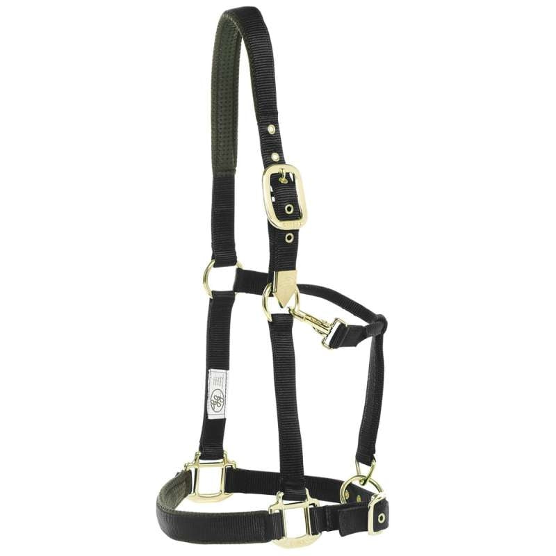 GG WEBBING HALTER DELUXE WITH BRASS FITTINGS black