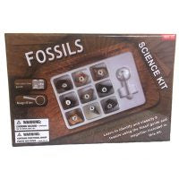 Fossils Science Kit