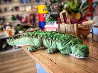 Mr Snappy the Weighted Crocodile 2.5Kg