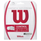 Wilson Synthetic Gut Control Tennis String