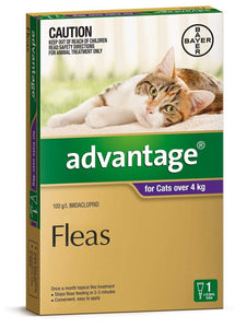 Advantage Purple Large Cat (1 Pack)