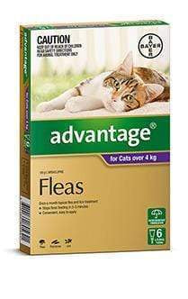 Advantage Purple Large Cat (6 Pack)