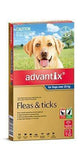 Advantix Blue +25Kg Dog (3 Pack)