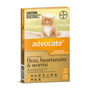 Advocate Orange Small Cat 0-4Kg (6 Pack)