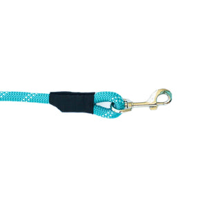 Climbers Dog Leash - Teal 4 Feet