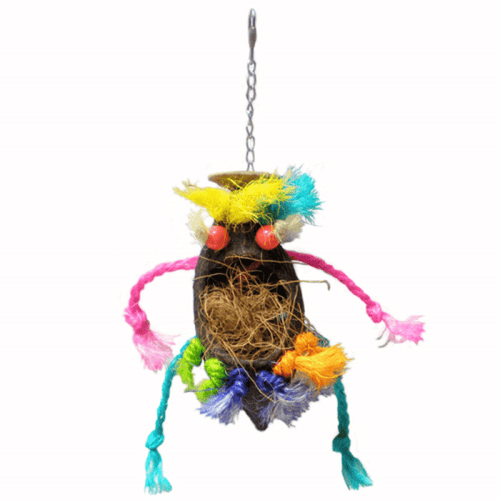 Crazy Pod Bird Toy