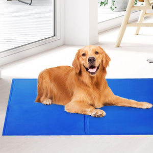 Pet Care 2X Pet Cooling Gel Mat Dog Bed Cat Beds Non-Toxic Cool Pad Puppy Summer 65x50