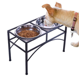 Dual Elevated Dog Feeder Bowl