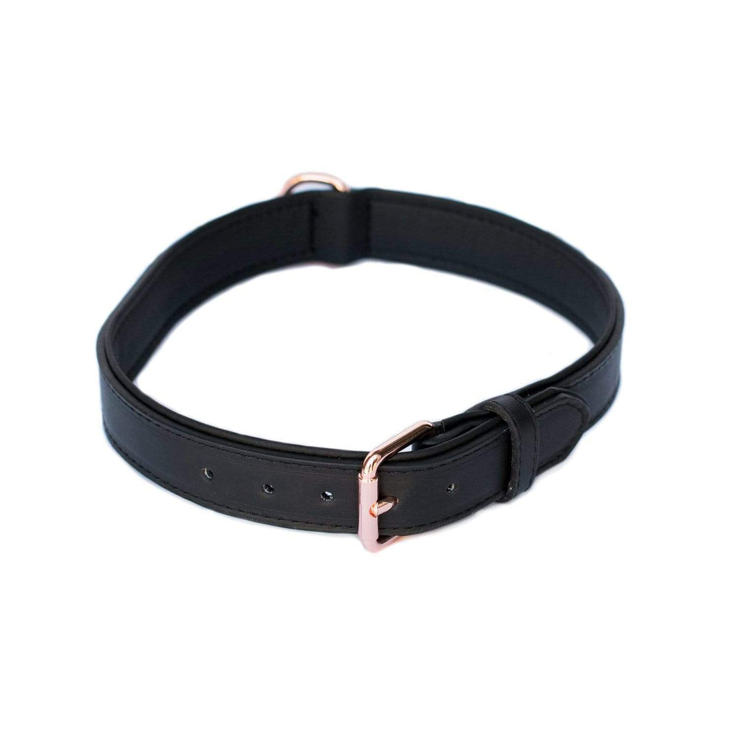Legacy Collection Collar - Black X-Large