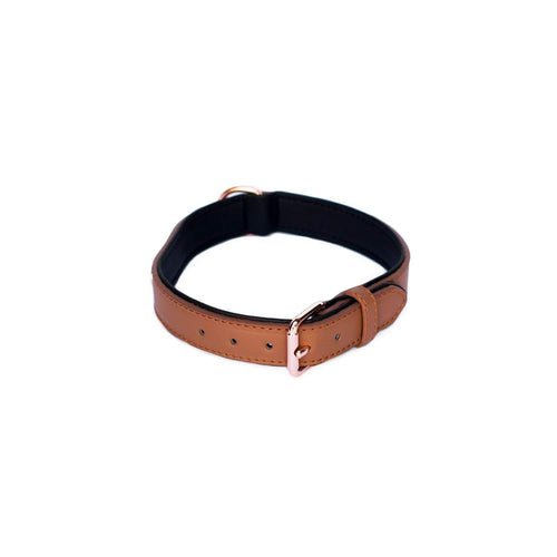 Legacy Collection Collar - Brown Medium