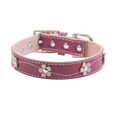 LUCY PINK DOG COLLAR
