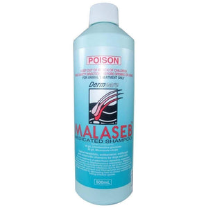 MALASEB MEDICATED FOAM 500ML
