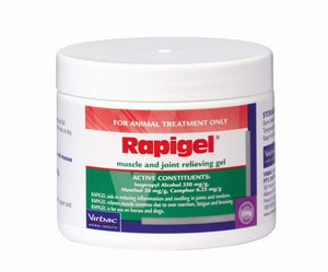 Rapigel 250Gm