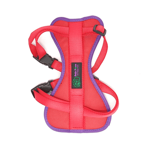 Safe Paws Dog Walking / Travel Harness cross- Small